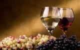 Наборы для приготовления вина